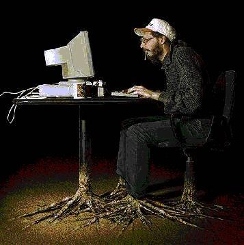Il vero programmatore!